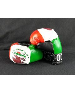 Mexico Mini Boxing Gloves (6 pair) 10301
