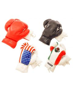 Boxing Gloves 6 Oz.