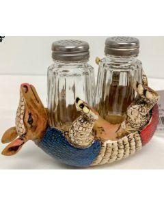 Texas Decor - Poly Armadillo Salt&Pepper Set YC182694Y