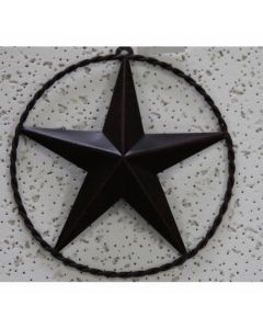 Texas Decor - Metal Star w/ Wire Ring A13019
